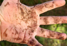 Dirty man hands , close up Stock Images