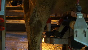 Dirty milking machine and dirty cow stock video footage