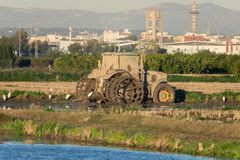 Dirty mud tractor in a rice field and white herons around it in the natrual park of Albufera, Valencia, Spain stock photography