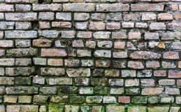 Dirty old brick wall background Royalty Free Stock Photos