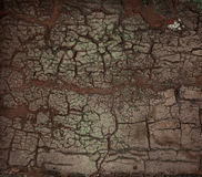Dirty old cracked wall Stock Photography