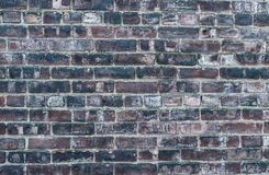 Dirty old grunge brick wall Stock Images