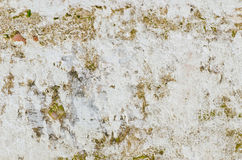Dirty old wall Royalty Free Stock Photos