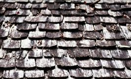 Dirty old wood roof Royalty Free Stock Image