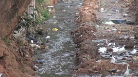 Dirty open sewer canal in Bhubaneswar,India. Nature catastrophic pollution stock video footage