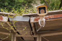 Dirty outdoor security camera and video on grass roof. Stock Photography