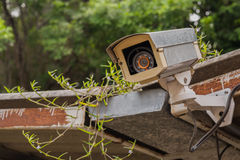 Dirty outdoor security camera and video on grass roof. Royalty Free Stock Photo