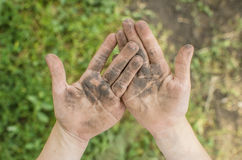 Dirty palms of the child. Dirty hands of a child in the ground. Stock Photography