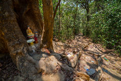 Dirty path and small temple in the jungle. Royalty Free Stock Photography