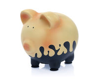 Dirty piggy bank. Isolated on white background Stock Images