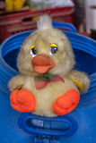 Dirty plush duckling Stock Image