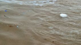 Dirty polluted water at the seashore. Plastic garbage and trash is floating in the sea water along the beach. Environmental pollution is a huge problem stock video footage