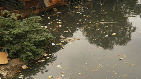 Dirty pond in the Ho Chi Minh city. In Vietnam stock video footage