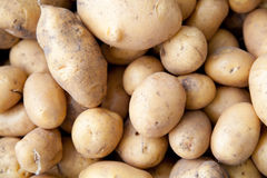 Dirty potatoes Stock Photography