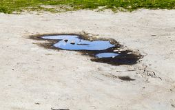 Free Dirty Puddle Stock Image - 101455211