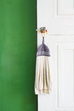 Dirty rag  hanging on the door Royalty Free Stock Photo