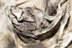 Dirty rags in oil as background. Photo of an abstract texture Stock Images
