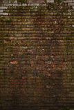 Dirty Red Bricks Royalty Free Stock Photography