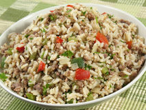 Dirty Rice Bowl. Dirty rice is a delicious traditional Cajun rice dish which is made dirty from the brown color of chicken liver and gizzards. It is prepared Royalty Free Stock Photo