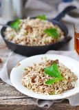 Dirty rice with ground beef Stock Photography