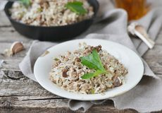 Dirty rice with ground beef Royalty Free Stock Images