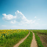Dirty road in agriculture fields and clouds over it Royalty Free Stock Photo
