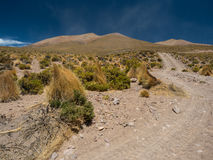 Dirty road in the Bolivian highlands Royalty Free Stock Images