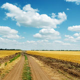 Dirty road in field and clouds in blue sky Stock Photos