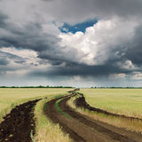 Dirty road in field and dramatic sky Stock Photo