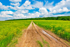 Dirty road on the field. Royalty Free Stock Photography