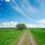 Dirty road in green field and blue sky Royalty Free Stock Photography