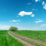 Dirty road in green fields Stock Image