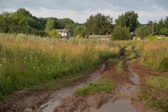 Dirty road trought fields Royalty Free Stock Photography
