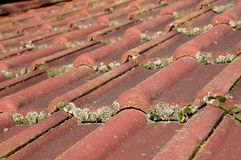 Dirty roof and gutter Royalty Free Stock Photography