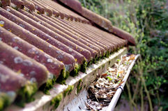 Dirty roof and gutter requiring cleaning. Dirty roof with dense moss and gutter with leaves requiring cleaning Royalty Free Stock Images