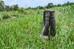 Dirty rubber boots Royalty Free Stock Images