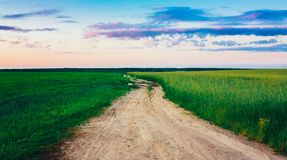 Dirty Rural Road In Countryside Field At Sunset Stock Images