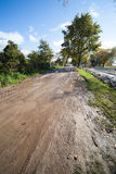 Dirty rural road and trees. Dirty rural road color background Royalty Free Stock Images