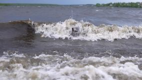 Dirty sea after a storm. Dirty waves with white foam carry garbage to the shore after the storm, slowed down traffic, slow-motion stock video footage