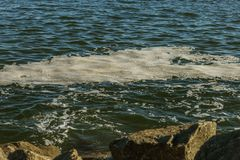 Dirty sea water. Dirt on water. Dirty oil spots on surface of se royalty free stock photos