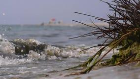 Dirty sea water stock video