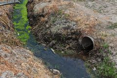 Dirty sewage along with sewage in an open ditch along the street. Dirty drainage, an open sewer collector here with toxic algae. E. Cological problem. Dirty Royalty Free Stock Photo
