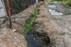 Dirty sewage along with sewage in an open ditch along the street. Dirty drainage, an open sewer collector here with toxic algae. E. Cological problem. Dirty Stock Image