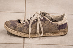 Dirty shoe with white laces Royalty Free Stock Photo