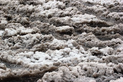Dirty slushy snow at wintertime Royalty Free Stock Image