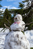 Dirty snowman Stock Images