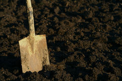 Dirty spade jabbed in spaded garden soil Stock Photos
