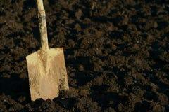 Dirty spade jabbed in spaded garden soil. Dirty spade jabbed in spaded cultivated garden soil stock photos