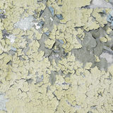 Dirty square texture Royalty Free Stock Photo