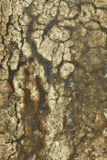 Dirty stone wall Royalty Free Stock Photography
